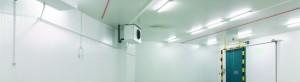 encargar cámara congelación en Valladolid